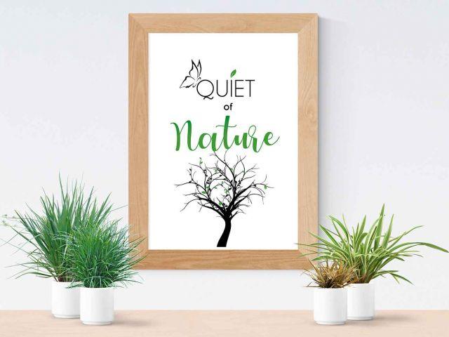 Image Quiet of Nature
